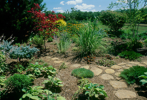 Individual taste and garden design- A well tended open garden with rock path and ample space between each plant