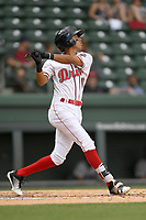 Shortstop Ricardo Cubillan (10) of the Greenville Drive bats in a game against the Augusta GreenJackets on Thursday, May 17, 2018, at Fluor Field at the West End in Greenville, South Carolina. Augusta won, 2-1. (Tom Priddy/Four Seam Images)