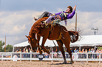 USA , Wyoming, Cheyenne   saddle bronc section  at 2017 Cheyenne Frontyer days
