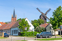 Turm der Heilig-Geist-Kirche und historische Bockwindmühle, Altstadtinsel Werder (Havel), Potsdam-Mittelmark, Brandenburg, Deutschland