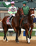 """October 07, 2018 : #11 Mister Banjoman and jockey Jareth Loveberry in the 1st running of The Indian Summer $200,000 """"Win and You're In Breeders' CupJuvenile Turf Sprint Division"""" for trainer Mark Casse and owner John Oxley  at Keeneland Race Course on October 07, 2018 in Lexington, KY.  Candice Chavez/ESW/CSM"""