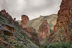 Oregon, Southeast, Jordan Valley. The red rock formations of Leslie Gulch in spring.