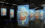 IMAGINE Van Gogh - Paris Exhibit