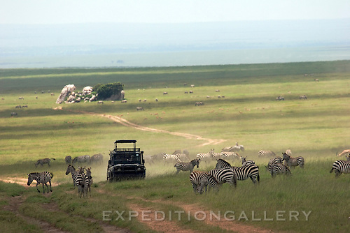 Safari vehicle on a dirt road passing zebras on the Serengeti Plains, Serengeti National Park, Tanzania, Africa. Rock outcrops known as kopjes seen through mirage in the distance.