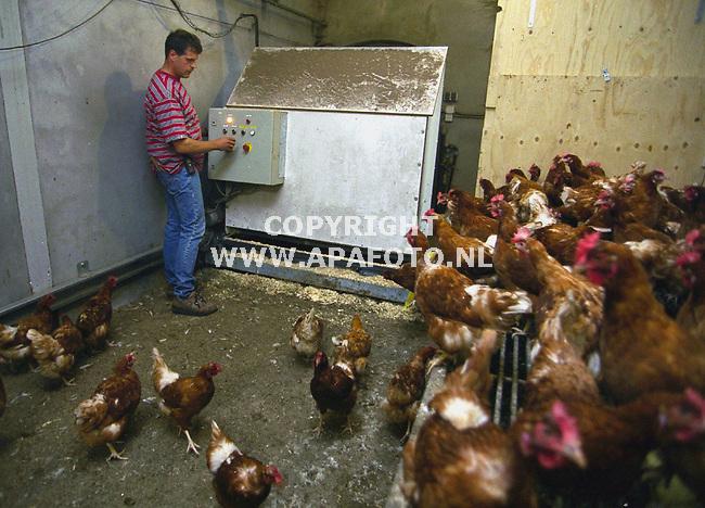 voorthuizen 240700 ecokippenfokker en aannemer pater test de nieuwe mestruimmachine in zijn kippenstal<br />foto frans ypma APA-foto