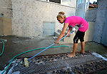 A woman washes her carpet outside her home in the largely Roma neighborhood of Gorno Ezerovo, part of the Bulgarian city of Burgas. Residents here don't self-identify much as Roma, because of the negative connotations associated with the word, so many refer to themselves as a Turkish-speaking minority.