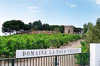 Domaine la Tour Vieille. Collioure. Roussillon. The gate. The vineyard. France. Europe. Vineyard.