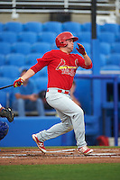Palm Beach Cardinals first baseman Casey Grayson (29) at bat during a game against the Dunedin Blue Jays on April 15, 2016 at Florida Auto Exchange Stadium in Dunedin, Florida.  Dunedin defeated Palm Beach 8-7.  (Mike Janes/Four Seam Images)