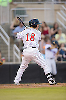 Bradley Strong (18) of the Kannapolis Intimidators at bat against the Asheville Tourists at Intimidators Stadium on May 28, 2016 in Kannapolis, North Carolina.  The Intimidators defeated the Tourists 5-4 in 10 innings.  (Brian Westerholt/Four Seam Images)