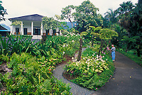 A man takes a quiet walk thru the gardens of the historic Queen Emma's Summer Palace located off the Pali Hwy, Oahu.