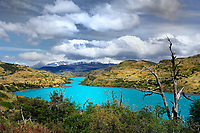 CHILE - NP Torres del Paine<br /> Lago Torro at the Guarderia Serrano<br /> Main Entrance NP Torres del Paine)