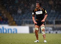 Photo: Richard Lane/Richard Lane Photography. London Wasps v Exeter Chiefs. 12/02/2012. Wasps' Jonathan Poff,