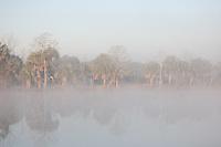 Foggy Morning on the Intercoastal Waterway near Appalatchicola Florida. March 2007