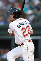 Designated hitter Mitchell Gunsolus (22) of the Greenville Drive bats in a game against the Charleston RiverDogs on Thursday, July 27, 2017, at Fluor Field at the West End in Greenville, South Carolina. Charleston won, 5-2. (Tom Priddy/Four Seam Images)