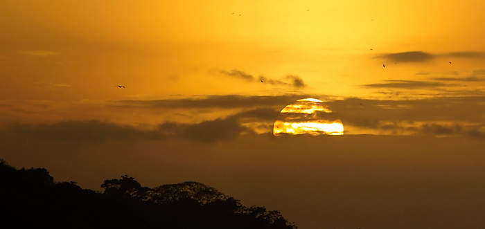La isla de Ícaro / atardecer en Saboga, Archipiélago de Las Perlas / Panamá.<br /> <br /> Panorámica de 2 fotografías / Panoramic image of 2 photographs<br /> <br /> Edición de 10 | Víctor Santamaría.