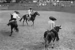 Rodeo Mexico 1970s. Cowboy known as Charros riding a bull 1973