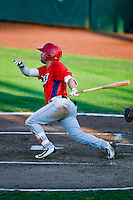 Zach Gibbons (37) of the Orem Owlz at bat against the Ogden Raptors in Pioneer League action at Lindquist Field on July 29, 2016 in Ogden, Utah. Orem defeated Ogden 8-5. (Stephen Smith/Four Seam Images)