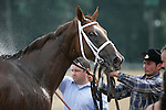 17 July 2010:  Life at Ten is sprayed with water after her win in the Delaware Handicap at Delaware Park in Stanton, DE.