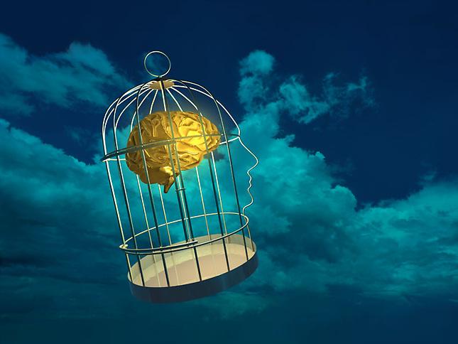 Brain in cage floating in sky