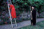 """Beating the Bounds. St Michael at the North Gate Oxford England UK """"Ascension Day"""". A ladder is provided so a garden college wall can be climbed over to keep to the traditional route.."""