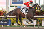 Trinniberg and jockey Willie Martinez goes wire to wire and wins decisively in the Swale Stakes(G3) at Gulfstream Park, Hallandale Beach Florida. 03-10-2012