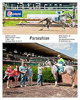 Parseghien winning at Delaware Park on 6/19/13