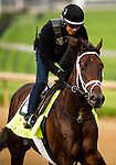 LOUISVILLE, KY - MAY 04: Outwork gallops in preparation for the Kentucky Derby at Churchill Downs on May 04, 2016 in Louisville, Kentucky.(Photo by Alex Evers/Eclipse Sportswire/Getty Images)