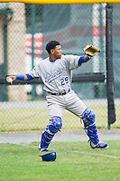 Burlington Royals catcher Meibrys Viloria (29) warms up in the outfield prior to the game against the Pulaski Mariners at Calfee Park on June 20, 2014 in Pulaski, Virginia.  The Mariners defeated the Royals 6-4. (Brian Westerholt/Four Seam Images)