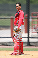 April 10, 2009:  Catcher Jorge Guerra of the Philadelphia Phillies extended spring training team during an intrasquad scrimmage at Carpenter Complex in Clearwater, FL.  Photo by:  Mike Janes/Four Seam Images