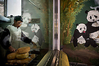 A panda mural is reflected in the window as a researcher prepares a specially made bread to feed to the captive and captive born pandas at the Hetaoping Panda Conservation Centre. The bread provides nutrients to the captive and captive born pandas are unable to get from bamboo alone.
