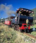 Austria, Tyrol, near Maurach, Achensee Railway between Jenbach and Seespitz at Lake Achensee, Europe's oldest steam operated cog railway | Oesterreich, Tirol, bei Maurach: die Achenseebahn faehrt von Jenbach zum Seespitz am Achensee und ist eine Schmalspur-Zahnradbahn