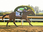 LEXINGTON, KY - APRIL 7: #11, Good Magic, ridden by Jose Ortiz wins the G2 Toyota Blue Grass at Keeneland Race Course on April 7, 2018 in Lexington, KY. (Photo by Jessica Morgan/Eclipse Sportswire/Getty Images)