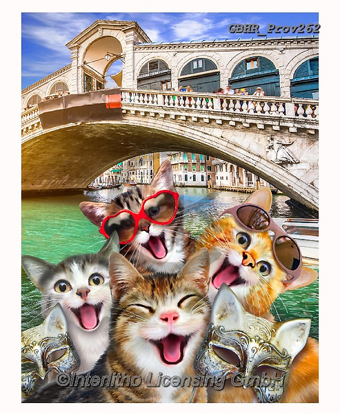 Howard, REALISTIC ANIMALS, REALISTISCHE TIERE, ANIMALES REALISTICOS, selfies,cats,venice,Bridge of Sighs , paintings+++++,GBHRPROV262,#a#, EVERYDAY