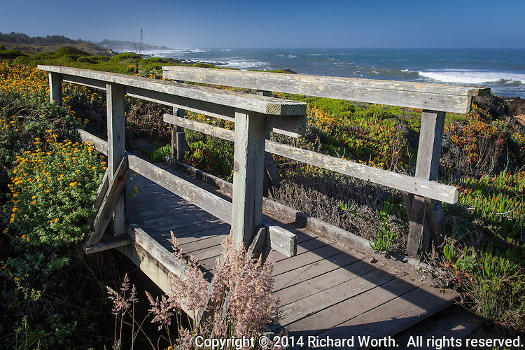 A footbridge along the path hugging the rugged coast at Bean Hollow State Beach on the California coast.