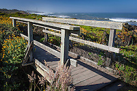 A footbridge along the path hugging the rugged coast at Bean Hollow State Beach on the California coast.