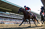 June 07, 2014: Tonalist with Joel Rosario (navy cap) wins the Belmont Stakes ending California Chrome's bid at a Triple Crown at Belmont Park in Elmont New York. Alex Evers/ESW/CSM