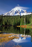 Mount Rainier reflection on Reflection Lakes in autumn, Reflection Lakes, Mount Rainier National Park, Lewis County, W