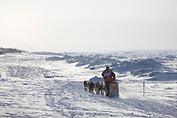 Musher Mitch Seavey heads out along the ice just outside of Nome during the 2008 All Alaska Sweepstakes 100 year commemorative sled dog race.