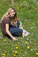 Kinder, Mädchen ernten, sammeln Kräuter im Frühjahr für Kräutersuppe und Wildgemüse - Salat, Wildkräuter, Ernte, Kräutersammeln, essbare Wildkräuter, Gänseblümchen, Bellis perennis