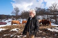Pozzallo frazione di Romagnese (Pavia). Cooperativa Agricola Canedo: allevamento semibrado di bovini da carne. Franco --- Pozzallo Romagnese (Pavia). Canedo Agricultural Cooperative: semi-wild breeding of beef cattle