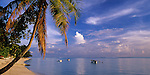 Bora Bora, French Polynesia   <br /> Coconut Palm and tropical evening clouds over calm waters of Bora Bora lagoon with boats anchored off Matira beach