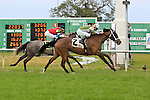 January 16, 2016: Street of Gold with Robby Albarado up wins the Marie G. Krantz Memorial Stakes race at the Fairground race course in New Orleans Louisiana. Steve Dalmado/ESW/CSM