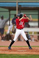 Javier Nazario (11) bats during the Perfect Game National Underclass East Showcase on January 23, 2021 at Baseball City in St. Petersburg, Florida.  (Mike Janes/Four Seam Images)