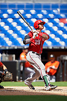 Washington Nationals catcher Alejandro Flores (19) follows through on a swing during a Florida Instructional League game against the Miami Marlins on September 26, 2018 at the Marlins Park in Miami, Florida.  (Mike Janes/Four Seam Images)