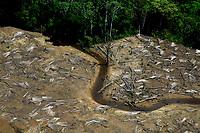 """Beruri, Amazonas 22 07 2010 - Desmatamento em áreas protegidas. A série """"Uma certa Amazônia"""" realizada durante a primeira década do século  21, quando os eventos extremos de cheia e vazante na Amazônia revelaram que algo de muito errado está acontecendo com o clima do planeta. Mudanças cada vez mais drásticas no regime das águas da bacia dos rios Negro e Solimões provocaram impactos como a fome, sede, doenças e mortandade de animais. O cotidiano das populações tradicionais e a paisagem amazônica mudaram definitivamente. Uma situação de extremos, onde as vazantes estão, a cada ano, se transformando em catástrofes e as cheias mostrando-se cada vez mais trágicas. Este cenário que a cada vez mais perde áreas de florestas para o agronégocio, principalmente  as plantações de soja e milho, assim como a criação de gado, além da pressão sofrida pela industria madereira em áreas de preservação permanente e também em terras indígenas, além  da exploração mineral e a ameaça pelas grandes obras de infra-estrutura do governo brasileiro fazem da Amazônia um dos ecossistemas mais frágeis perante a ação do homem."""