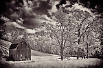 Black and white image of old barn and trees