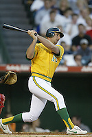 John Mabry of the Oakland Athletics bats during a 2002 MLB season game against the Los Angeles Angels at Angel Stadium, in Anaheim, California. (Larry Goren/Four Seam Images)