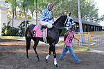 Scenes from around the track on Hialeah Derby Day on December 31, 2011 at Hialeah Park in Hialeah, Florida.  (Bob Mayberger/Eclipse Sportswire)
