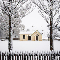 Cardrona Hall Framed by Trees in Winter Snow, Christopher David Thompson