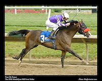 As seen in the Arabian Horse Galleries exhibit at The Kentucky Horse Park<br /> <br /> Tour De France.The Mandolynn Hill Farm Stakes